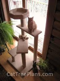 best 25 diy cat tower ideas on pinterest diy cat tree cat