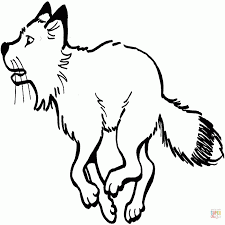 Zorro ártico Libro Para Colorear Fennec Fox Dibujo Fox Png Dibujo
