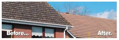 roof tile cleaning above are exles of how the mossgo pro roof