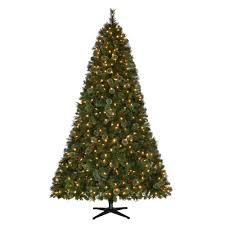 75 Ft Pre Lit LED Alexander Pine Artificial Christmas Tree With 550