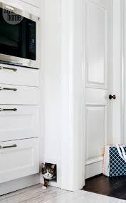 Pet Doors For Patio Screen Doors by Best 25 Pet Door Ideas On Pinterest Dog Rooms Pet Products And