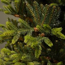Artificial Christmas Trees Uk 6ft by 6ft Kingswood Fir Artificial Christmas Tree