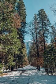 Ahwahnee Hotel Dining Room by Snow Day At Yosemite National Park U2013 Keer U2022 Stee