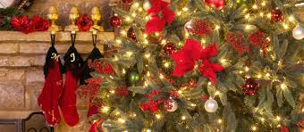 Troubleshooting Prelit Christmas Trees Smithstix Promotion Code Christmas Tree Hill Promo Merrill Rainey On Twitter For Those That Were Inrested Greenery Find Great Deals Shopping At My First Svg File Gift For Baby Cricut Nursery Svg Kids Svg Elf Shirt Elves Onesie 35 Off Balsam Hill Coupons Promo Codes 2019 Groupon Shop Coupons Nov 2018 Gazebo Deals Spaghetti Factory Mitchum Deodorant White House Ornament Coupon Weekend A Free Way To Celebrate Walt Disney World Walmart Christmas Card Free Calvin Klein Black Tree Skirt Rid Printable Suavecito Whosale Discount