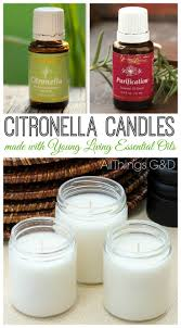 Citronella Lamp Oil Amazon by 22 Best Best Citronella Candles U2013 Mosquito Candles That Work