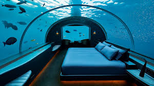 104 The Water Discus Underwater Hotel Sleeping With Fishes Unique S Above And Below