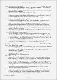 Program Manager Resumes Examples Project Management Resume Inspirational Cto 0d Wallpapers 50