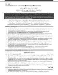 Vice President Of Sales Director Business Development Resume Sample