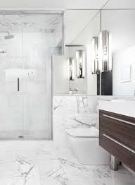 Quickie In The Bathroom by The Bathroom Quickie Lux Interior Design