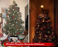 Nordmann Fir Christmas Tree Nj by Why You Should Buy Your Real Christmas Tree Online And Vendor