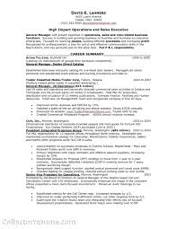 Jewelry Sales Resume Director Manager Sample Image Rh Sevte Com Representative Job Description For