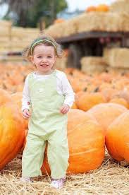 Pumpkin Patch Near Bay Area by Best Pumpkin Patches And Farms In The San Francisco Bay Area