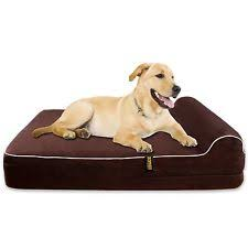 Boots And Barkley Dog Bed by Boots Barkley Large Orthopedic Pet Pillow Ebay