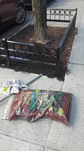 100 Astor Terrace Nyc Tree Guards Metal Tree Guards NYC