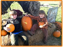 Pumpkin Patch Hayrides Lancaster Pa by Where Near Philly To Pick Your Own Pumpkins Mapped