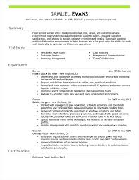 Resume Summary Examples Inspirational Collection Of For Customer Service