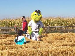 Odyssey Pumpkin Patch Groupon by Odyssey Fun Farm Illinois Haunted Houses
