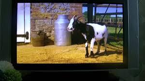 Big Barn Farm images