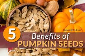 White Pumpkin Seeds Testosterone by Pumpkin Seeds Deliver 5 Health Benefits