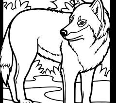 Wolf Coloring Pages Free Page Best Adresebitkisel
