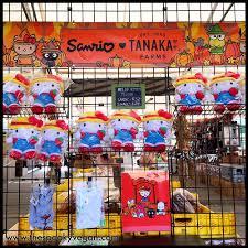 Tanaka Farms Pumpkin Patch by The Spooky Vegan Sanrio Pumpkin Patch At Tanaka Farms