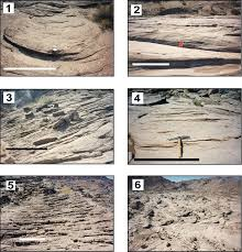 Trough Cross Bedding by Fig2 Jpg