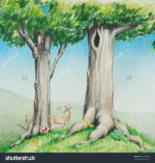 Abbies Nature Drawings And Paintings Set Shutterstock Hand Drawn Colored Pencil Sketch Cute Deer In Big Tall Trees With Bright Green Grass