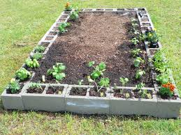 A little bit of this and that Raised bed for ve able garden
