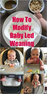 How To Modify Baby Led Weaning Disney Baby Simple Fold Plus High Chair Minnie Dotty Baby Feeding Tips Cereal Puree And Led Weaning Past Gber Spokbabies Congrulate 2018 Contest Winner Gber Lillies Len Pin On Products We Love How To Introduce Peanuts To Babies Prevent Peanut Expert Advice On Feeding Your Children Littles Introducing Solid Foods Parents Mama Jones Twitter Look At My Grandbaby Trying The 8 Best Organic Food Brands Of 2019 And Baby Comes Too But Watch Out Restaurant High Chairs