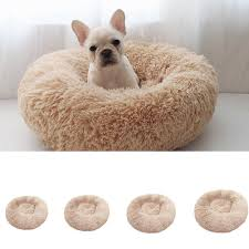 Luxury Shag Fluffy Pet Bed Dog/Puppy/Kitten Fur Donut Cuddler Soft Cushion  Mat I Got A Beanbag Chair For My Room And Within Less Than 10 Best Bean Bags The Ipdent Cat Lying Gray Chair Bag Stock Photo More Pictures Of The Plop Teardropshaped Spillproof Bag Mrphy Sumo Sway Couple Beanbag Review Surprisingly Supportive Washable Warm Dogs Cats Round Sofa Autumn Winter Plush Soft Breathable Pet Bed Noble House Faux Fur Bean Silver Animal Print Walmartcom Choose Right Fabric Your Chairs Big Joe Lux Wild Bunch Calico In Fuzzy Download Devrycom Exclusive Home Decoration