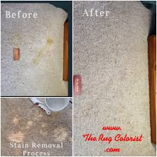 How To Fix Bleach Stains On Carpet by Carpet Dye To Fix Bleach Stains Carpet Nrtradiant