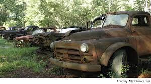 100 Rusty Trucks Ford Just Because Ford