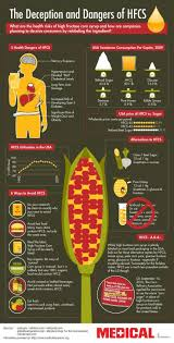 Christmas Tree Preservative Recipe Mythbusters by 140 Best Infographics Images On Pinterest Infographics Project