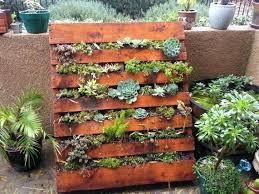 Pallet Garden Ideas Succulent Veggie