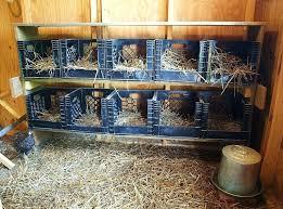 Crates For Storage Milk Crate Ideas Nine Ways To Plastic Bunnings