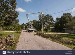 Duke Energy Working On Restoring Electric After Hurrivcane Irma ... Why The Dodge Charger Worked For Dukes Of Hazzard The Wiki Fandom Powered By Streets And Storms Sewer Maintenance City Goldsboro Ktm 125 Duke Dolce Classifieds Perfect Replacement 125db 5 Dixie Musical Air Horn Collector Family Festival Pictures From Contact Pating 7314790160 Concrete Cutting Demolition Equipment Gives Inrstate Sawing An I20 Canton Truck Automotive Broad River Auto Repair Expert Auto Repair Columbia Sc 29210 Sales Buy Sell Trade Used Vintage Antique