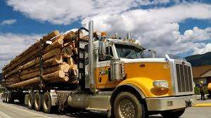 100 Log Trucks BC LOGGING TRUCKS 23 Kenworth Peterbilt Western Star