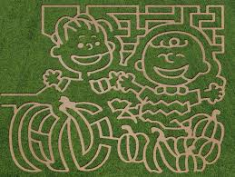 Best Pumpkin Patch Lancaster Pa by Get Lost Corn Mazes For 2016 In Central Region Of Pa Pennlive Com