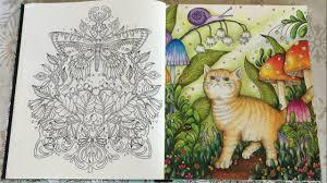 Kittys Dream Land