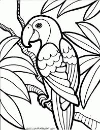Parrot Coloring Pages Bird PagesFree Printable