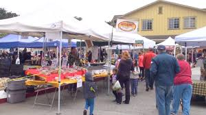 Half Moon Bay Pumpkin Festival Winner by New Radio