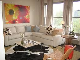 apartments modern small living room decor ideas with white