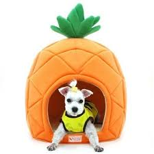 Amazon Pesco Dog House Pineapple Shape Cute Dome House Soft