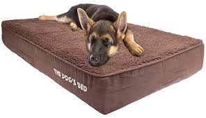 choosing the best orthopedic bed for your dog reviews guide