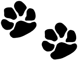 cat paw prints clip cat paw prints clipart panda free clipart images