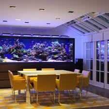 Terrific Aquarium Room Ideas Pictures - Best Inspiration Home ... Amazing Aquarium Designs For Your Comfortable Home Interior Plan 20 Design Ideas For House Goadesigncom Beautiful And Awesome Aquariums Cuisine Small See Here Styfisher Best Stands Something Other Than Wood Archive How To In Photo Good Depot Kitchen Cabinet Sale 12 To Home Aquarium Custom Bespoke Designer Fish Tanks Perfect Modern Living Room Lighting 69 On Great Remodeling Office 83 Design Simple Trending Colors X12 Tiles Bathroom 90