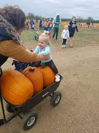 Apple Orchard Pumpkin Patch Sioux Falls Sd by The Country Apple Orchard Posts Facebook