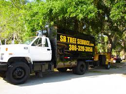 Tree Service Daytona, Ormond, Port Orange | Palm Tree Services New ... Having Too Much Fun To Stop For Paint 1961 Ford F100 And Car Towing Heavy Truck Repair Cambridge Oh 74043900 2009 Intertional Durastar 11 Ft Arbortech Forestry Body 60 Work Crane Removal Marquis Tree Trimmer Service Company Ma Used Boom Trucks For Sale Our Equipment Arbormax Diecast Vintage Pickup Christmas Chip Dump Trucks Pumpers Trim Their The Holidays Pumper Filetree Spade Truck Loveland Coloradojpg Wikimedia Commons The Armys Selfdriving Hit Highway Ppare Battle Wright Reaps Rewards From Long