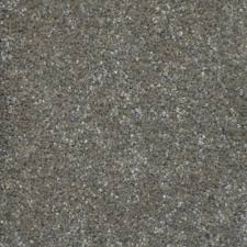 Home Decorators Collection Carpet Sample