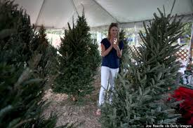 Luiza Chiminacio Uses Her Cell Phone To FaceTime A Friend As They Look For The Perfect Christmas Tree At Santas Garden On December 9 2013 In Miami